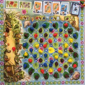 Frogriders Spielfeld